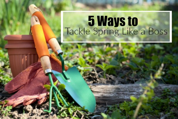 Tackle Spring Like a Boss